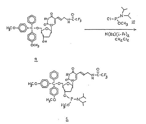 j carbohydrates nucleosides nucleotides patent ep0198207b1 specific iodination of nucleic acid