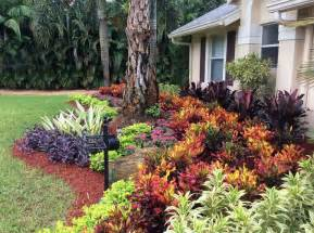 25 best ideas about florida landscaping on