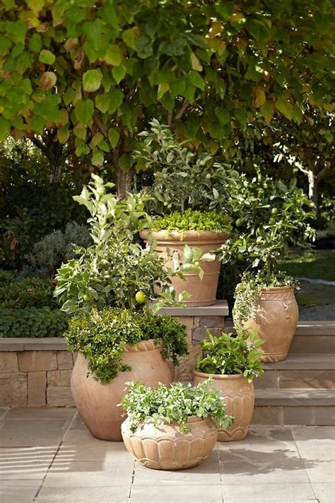 Terracotta Garden Planters by Terra Cotta Pots Beautiful Gardens Outdoor Spaces
