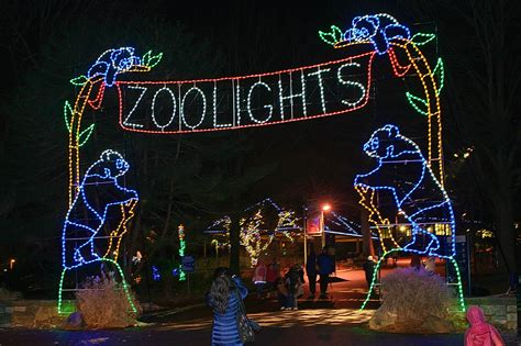 when does zoo lights end hewan lucu 2016 when does zoo lights end images