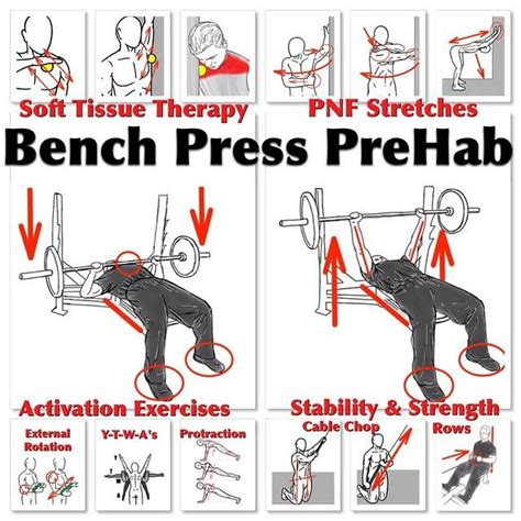 bench press stability 14 best images about powerlifting on pinterest beast