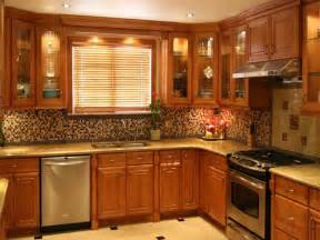 Kitchens With Oak Cabinets Pictures Oak Kitchen Cabinet Doors Home Furniture Design