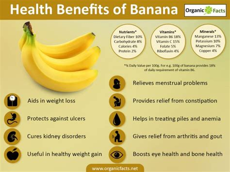 Banana Medicinal And Cosmetic Value by 16 Surprising Benefits Of Banana Organic Facts
