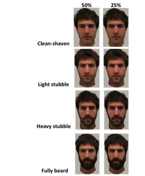 beard length vs hair length how facial hair changes a man s attractivity psyblog