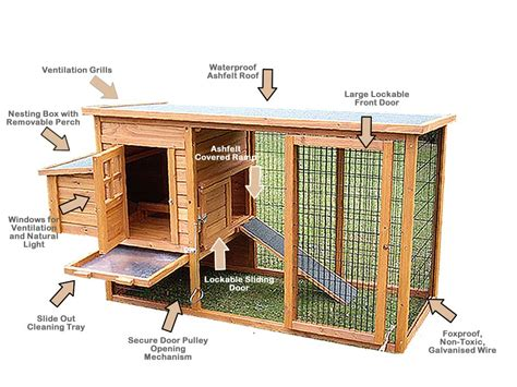 Chicken Hutch Design Denny Yam Free Easy Chicken Coop Blueprints