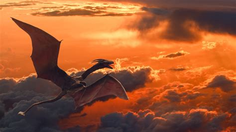 wallpaper flying dragon sunset clouds hd creative