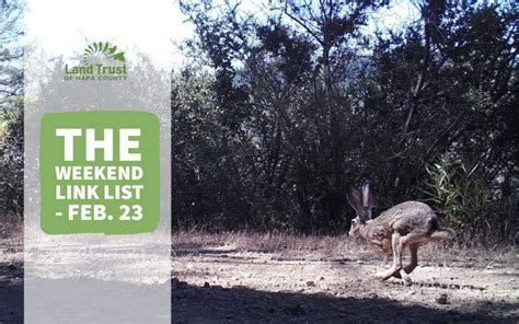 The Weekend Link by The Weekend Link List Feb 23 Land Trust Of Napa County