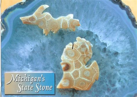 michigan state stone petoskey home stones and search