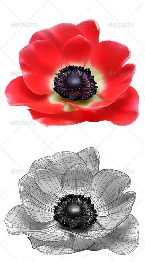 anemone tattoo 1000 images about anemone flower tattoos on