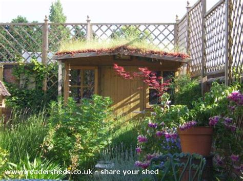 Green Roof For Shed by Green Roof Shed From Coventry Uk Owned By