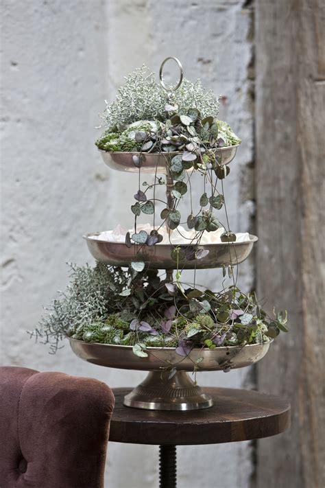 Etagere Blumen by Floradania Marketing Plants