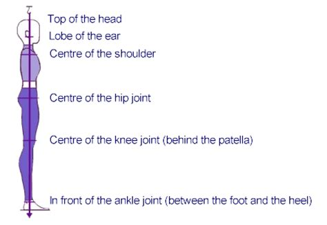 Plumb Line Assessment by Stanyer Posture Postural Alignment For Dancers