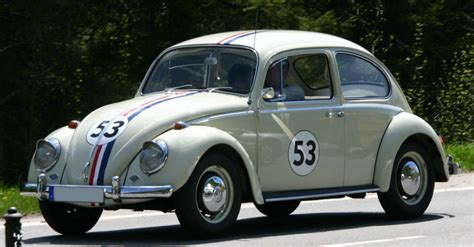 bed bugs in car image gallery love bug car
