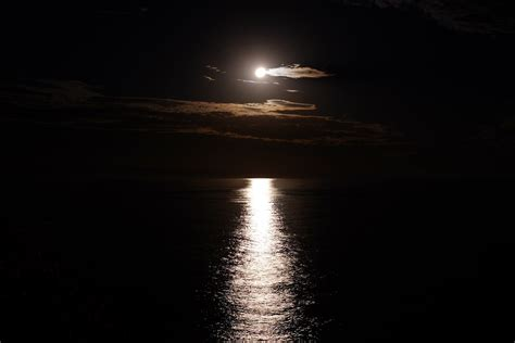 Moon Shine free photo moon shine reflection free image on