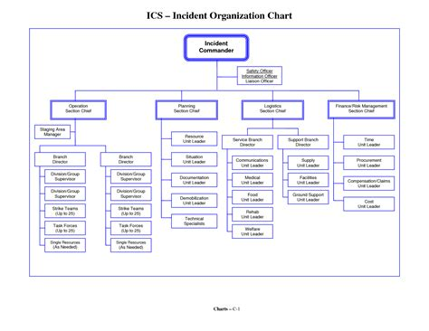 template org chart 6 best images of simple org chart template free