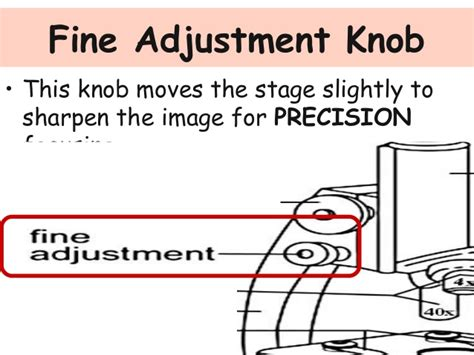 Coarse Adjustment Knob Function by Parts Of The Microscope And Their Functions