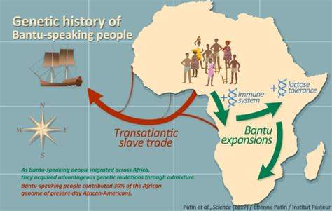 nature of migration pattern in nigeria the genetic history of bantu speakers and their