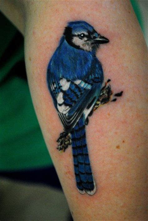 blue jay tattoo best 25 blue ideas on blue