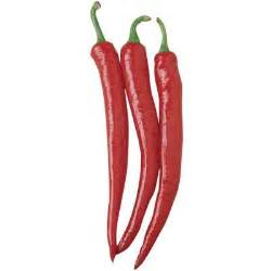 Pepper Cayenne Long Slim ? Harris Seeds
