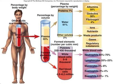Blood Considers Adoption by Blood Cells And Charts On