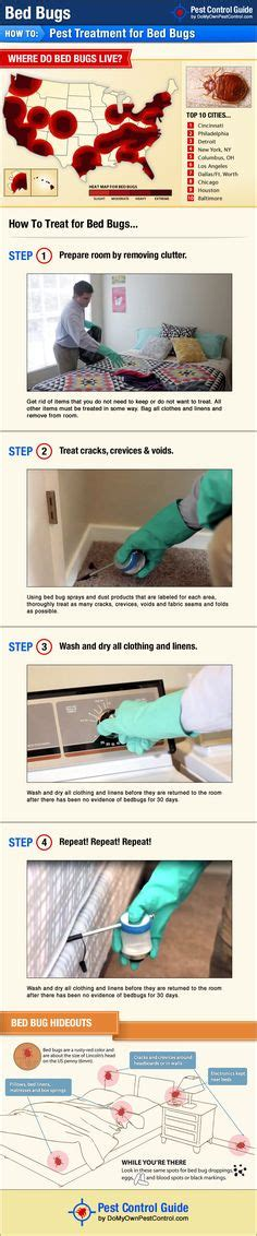 bed bugs images   bed bug remedies bed bugs treatment bed bug trap