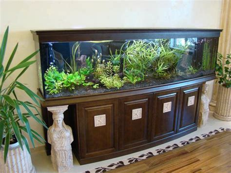 fish tank room design thinking about your room decor before buying aquarium