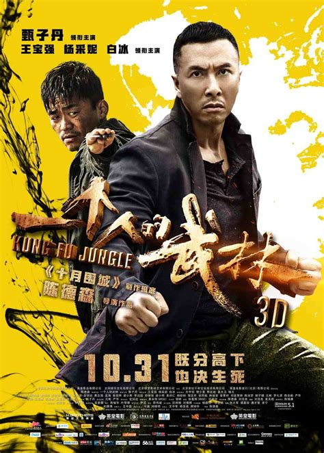 kung fu jungle 2015 martial arts entertainment dvd review kung fu killer