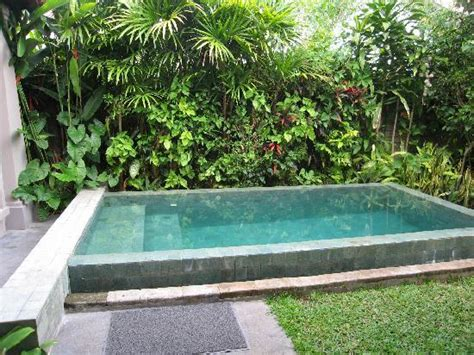 pools for small yards on pinterest small pools small