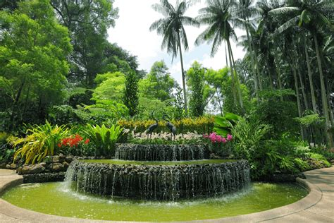 What Is Botanical Garden Singapore Botanical Gardens Aspen Holidays Singapore