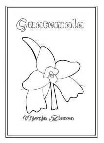 dibujos alusivos para colorear de los simbolos patrios peru colorear flor nacional de guatemala monja blanca