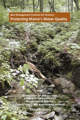 Best Management Practices For Forestry Protecting Maine S