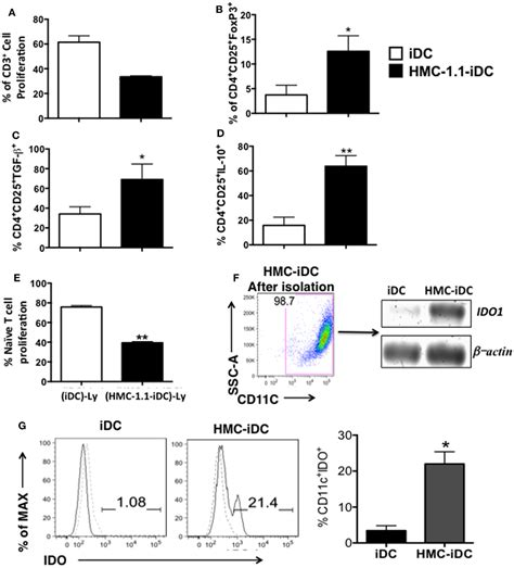 frontiers tolerogenic dendritic cells for frontiers tolerogenic ido dendritic cells are induced