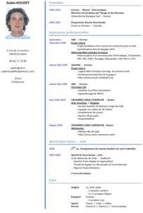Curriculum Vitae Resume Sles Free Aubin Houdet Caseneuve