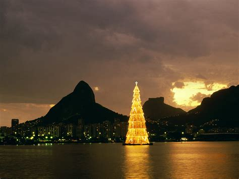 christmas trees in brazil my loud scantily clad