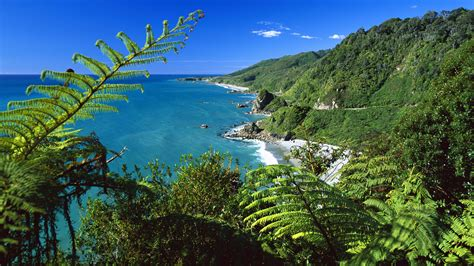 cool wallpaper new zealand new zealand south island wallpaper 312013