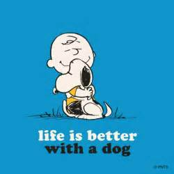 Go back gt gallery for gt funny snoopy quotes