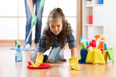 tidy home cleaning tidy home cleaning 28 images gallery tidy home