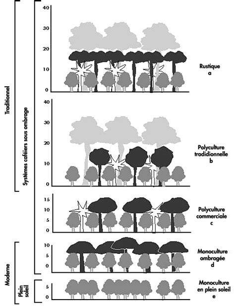 Los árboles fuera del bosque   Hacia una mejor consideración
