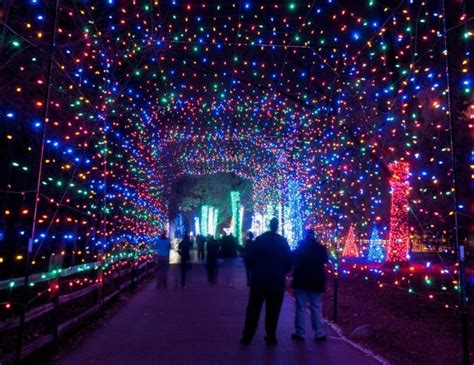 12 best light displays in michigan 2016