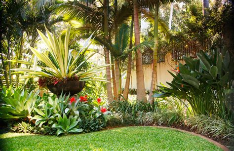 tropical backyard ideas tropical landscape design ideas gardening flowers 101