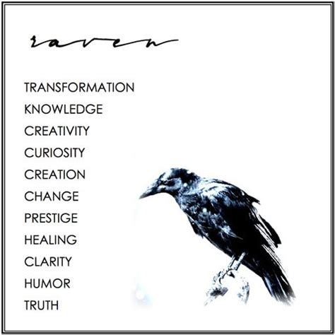 raven tattoo meaning meaning symbolism birds