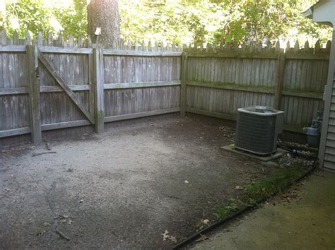 small backyard designs no grass very small backyard needs help