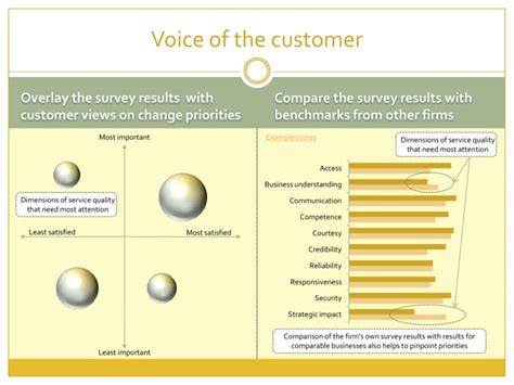 voice of the customer journey from novice to expert books hr voice of the customer