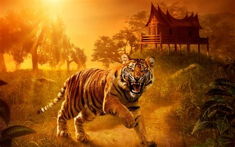 wallpaper wild tiger angry jungle creative graphics