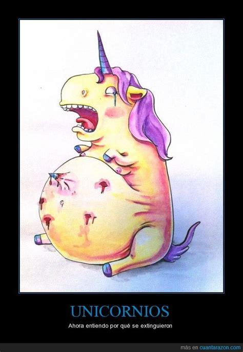 imagenes de gatos unicornios 161 cu 225 nta raz 243 n unicornios