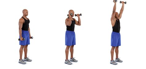 Suplemen Untuk Memperbesar Otot memperbesar otot biceps memperbesar percaya diri