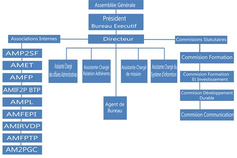 Modèle D Organigramme