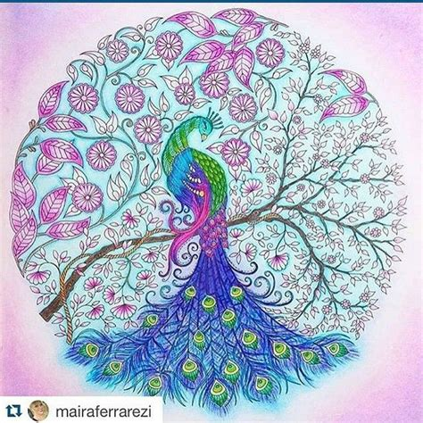 secret garden coloring book instagram johanna basford quot secret garden quot peacock color pages