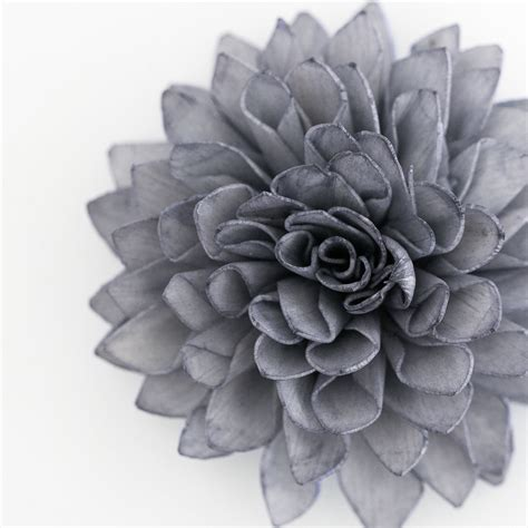 Grey Flower grey flowers images search