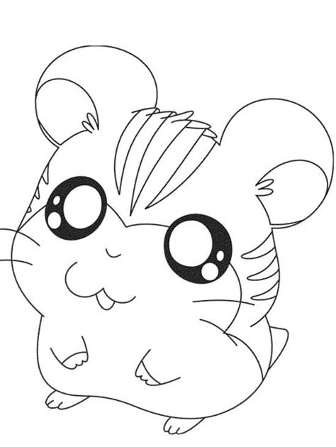cute hamster coloring pages coloring pages